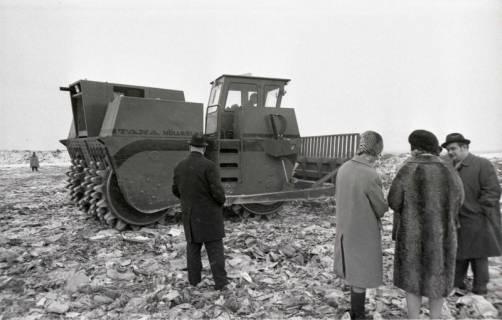 ARH NL Koberg 916, Mülldeponie, Altwarmbüchen, 1971