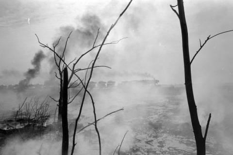 ARH NL Mellin 01-017/0023, Waldbrand in der Lüneburger Heide?, wohl 1975