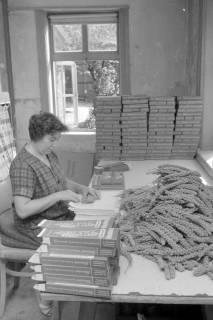 ARH NL Mellin 01-064/0001, Verpackung von Kolbenhirse in der Vogelfutterfabrik H. Finkenstedt in Lehrte, ohne Datum