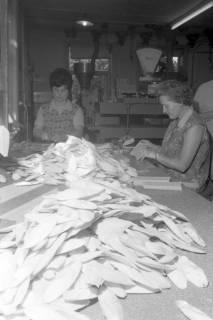 ARH NL Mellin 01-064/0002, Verpackung von Sepia-Schalen in der Vogelfutterfabrik H. Finkenstedt in Lehrte, ohne Datum