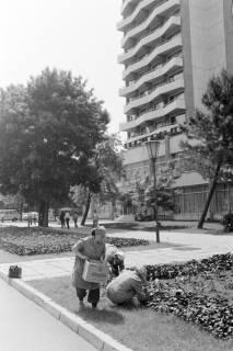NL Mellin 01-069/0010, Bulgarien?, zwischen 1975/1976