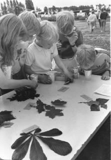 ARH Slg. Bartling 446, Kinderbelustigung auf der Liegewiese: 5 Kinder an einem Tisch bei der Blattbestimmung und Geruchserkennung, um 1970