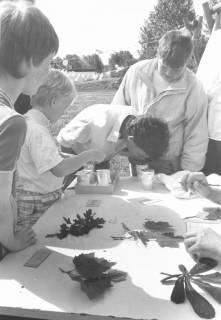 ARH Slg. Bartling 450, Kinderbelustigung auf der Liegewiese: 4 Kinder an einem Tisch bei der Blattbestimmung und Geruchserkennung, um 1970