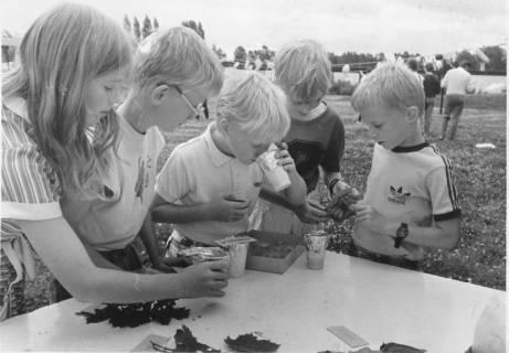 ARH Slg. Bartling 453, Kinderbelustigung auf der Liegewiese: 5 Kinder an einem Tisch bei der Blattbestimmung und Geruchserkennung, um 1970