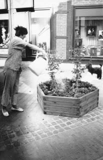 ARH Slg. Bartling 683, Mittelstraße 28, Frau begießt Pflanzen im hölzernen Kübel vor dem Schaufenster von Foto Köster, um 1970
