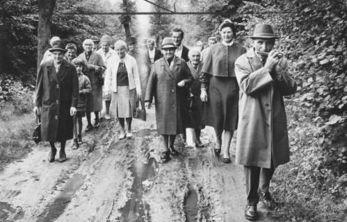 ARH Slg. Bartling 1866, Gruppe von Senioren mit Diakonisse beim Spaziergang auf matschigem Waldweg, rechts ein Mundharmonika-spielender Mann, Neustadt a. Rbge., 1970