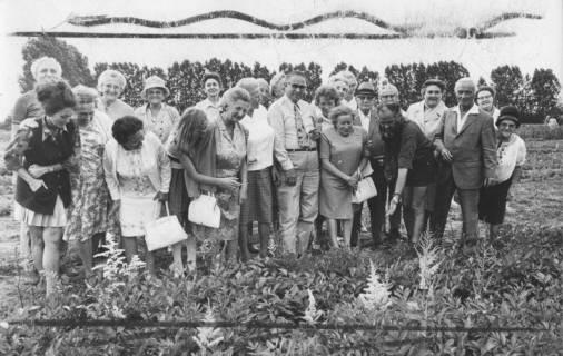 ARH Slg. Bartling 1869, Gruppe von Senioren auf einem Stück Land mit Blumenpflanzen, Neustadt a. Rbge., 1972