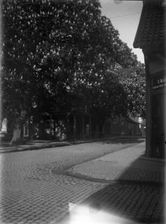 ARH Slg. Grabenhorst 10, Blick auf die alte Wache, Neustadt a. Rbge., vor 1924