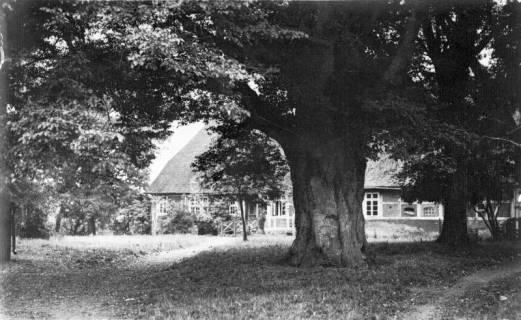 ARH Slg. Grabenhorst 27, Unbekannt, vor 1924