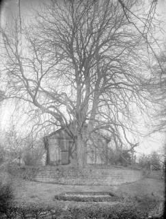ARH Slg. Grabenhorst 30, Unbekannt, vor 1924